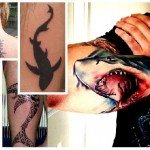 Creative Shark Tattoo Design