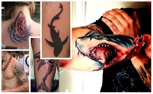 shark tattoo designs